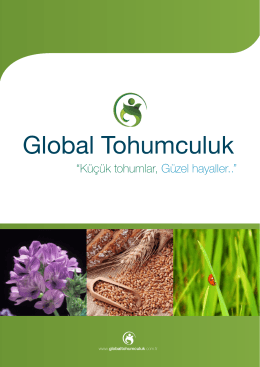 Global Tohumculuk Broşür WEB 11.09.2014