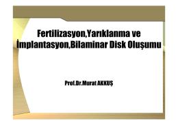 Fertilizasyon,Yarıklanma ve İmplantasyon,Bilaminar Disk Oluşumu