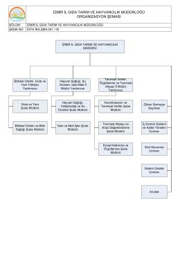Genel ve Bölüm Organizasyon Şemaları