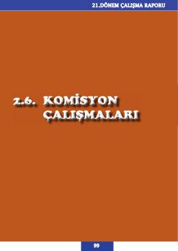 21.DONEM CALISMA RAPORU_1.indd