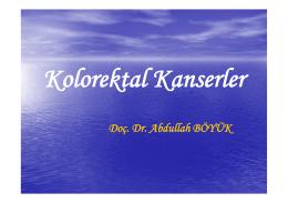 Doç. Dr. Abdullah BÖYÜK