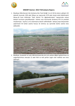 MNHRP Haziran- 2014 TUB Çalışma Raporu