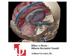 Bilinç ve Beyin : Bilincin Beyindeki Temsili