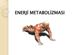 Enerji Metabolizması Sunumu - gastronomi