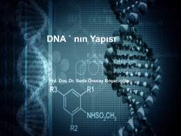 FFMBG103- MOLEKÜLER BİYOLOJİ VE GENETİK 1