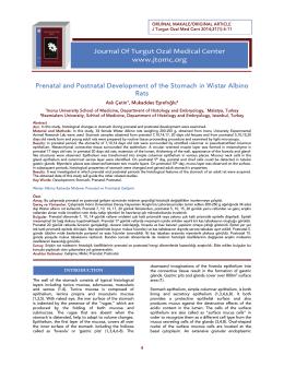 Tam Makale/PDF - İ.Ü. Tıp Fakültesi Dergisi