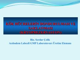 Kök Hücrelerin Dondurulması Ve Saklanması (Kryoprezervasyon)