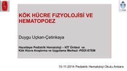 PowerPoint Sunusu - Türk Pediatrik Hematoloji Derneği