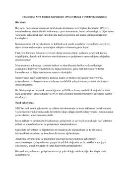 Uluslararası Sivil Toplum Kuruluşları (INGO) Hesap Verebilirlik