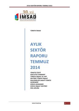 aylık sektör raporu temmuz 2014