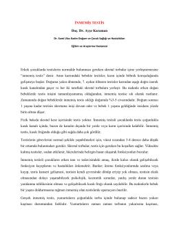 İNMEMİŞ TESTİS Doç. Dr. Ayşe Karaman Erkek çocuklarda