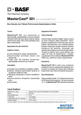 MasterCast® 301 (Eski adı RHEOMIX® 301) Sıva