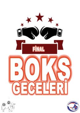 final boks geceleri - Hayrettin Dikkanoğlu