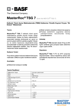 MasterRoc® TSG 7 (Eski Adı MEYCO® TSG 7) Kalkanlı