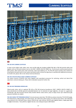 clımbıng scaffold - TMS Formwork & Scaffolding Systems