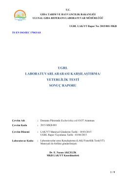 2015-MKB-001-LAK-YT SonucRaporu.pdf