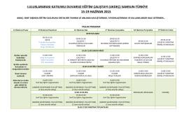 Çalıştay Programı