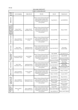 Ek A/2: Muhasebe Müdürlüğü Görev Dağılımı Çizelgesi