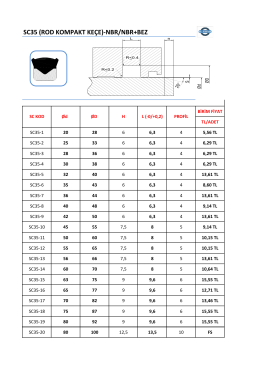SC35 (ROD KOMPAKT KEÇE)-NBR/NBR+BEZ
