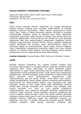 P11. Hayvan Modelleri: Molekülden Hastalığa