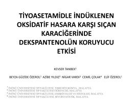 Kevser Tanbek