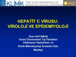 HEPATİT C VİRUSU: VİROLOJİ VE EPİDEMİYOLOJİ