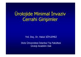 Ürolojide Minimal İnvaziv Cerrahi Girişimler