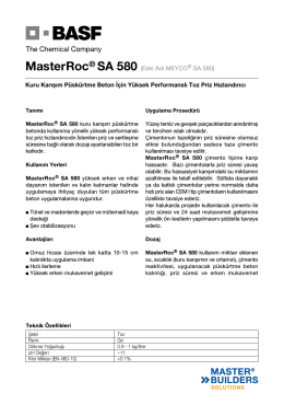 MasterRoc® SA 580 (Eski Adı MEYCO® SA 580) Kuru