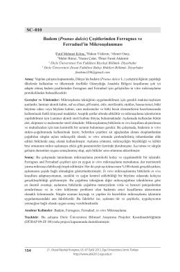 SC–010 Badem (Prunus dulcis) Çeşitlerinden Ferragnes ve