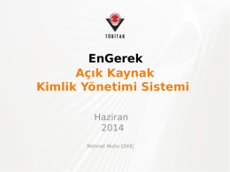 8-Mehmet Mutlu Cekic