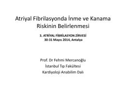 Fehmi Mercanoğlu - 4. atriyal fibrilasyon zirvesi 2015