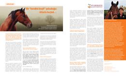 Atlarla koçluk… - HR İnsan Kaynakları ve Yönetim Dergisi