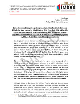 1 Türkiye İMSAD Ekonomi Değerlendirme Raporu/179