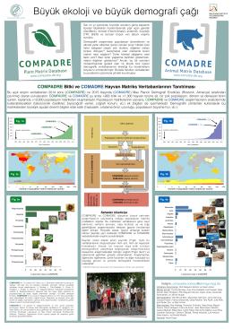 COMPADRE Bitki ve COMADRE Hayvan Matriks