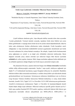 Farklı Arpa Çeşitlerinde Arbüsküler Mikorizal Mantar Kolonizasyonu