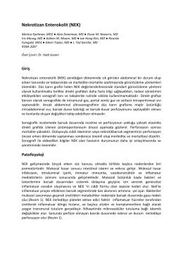 Dosyayı İndir - Dr. Hadi Sasani