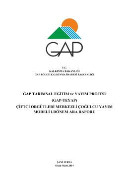 GAP Yayım Modeli I. Dönem Raporu