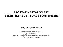 Prostat Hastalıkları (Belirtileri ve Tedavi) Konferansı Görmek İçin