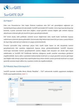 SurGATE DLP - Surgate Labs