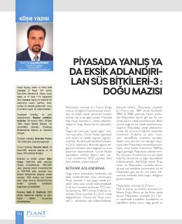 lan süs bitkileri-3 - Kocaeli Üniversitesi