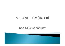 DOÇ. DR.YAŞAR BOZKURT