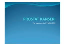 Dr. Necmettin PENBEGÜL