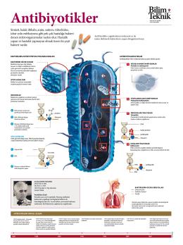 Antibiyotikler - Bilim Teknik