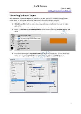 Örnek 3: Web Butonu Yapma
