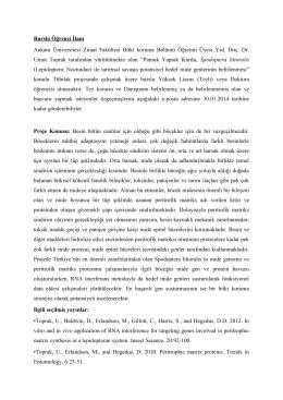 Tübitak projesinde çalışmak üzere burslu Yüksek Lisans (Tezli)