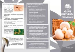 Kültür Mantarında Zirai Mücadele - TC Gıda Tarım ve Hayvancılık