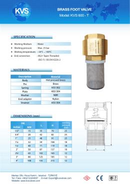101 Foot valve