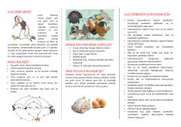 Kuş Gribi - Ankara İl Gıda Tarım ve Hayvancılık Müdürlüğü