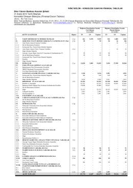 Diler Yatırım Bankası Anonim Şirketi 31 Aralık 2014