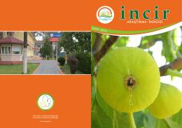 incir - TC Gıda Tarım ve Hayvancılık Bakanlığı